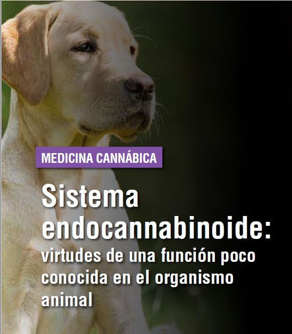 https://www.seleccionesveterinarias.com/files/